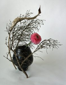Ranunculus-and-dried-branches1-800x1024